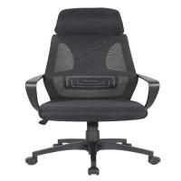 Cadeira de Escritório Presidente Pelegrin PEL-0289