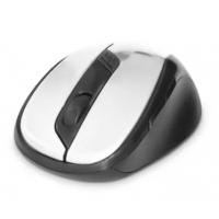 Mouse Sem Fio Dex LTM-308